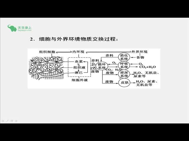 人教版 高二生物 必修三 第1章 人体的内环境及稳态-内环境是细胞与外界环境进行物质交换的媒介-视频微课堂(王志娜)