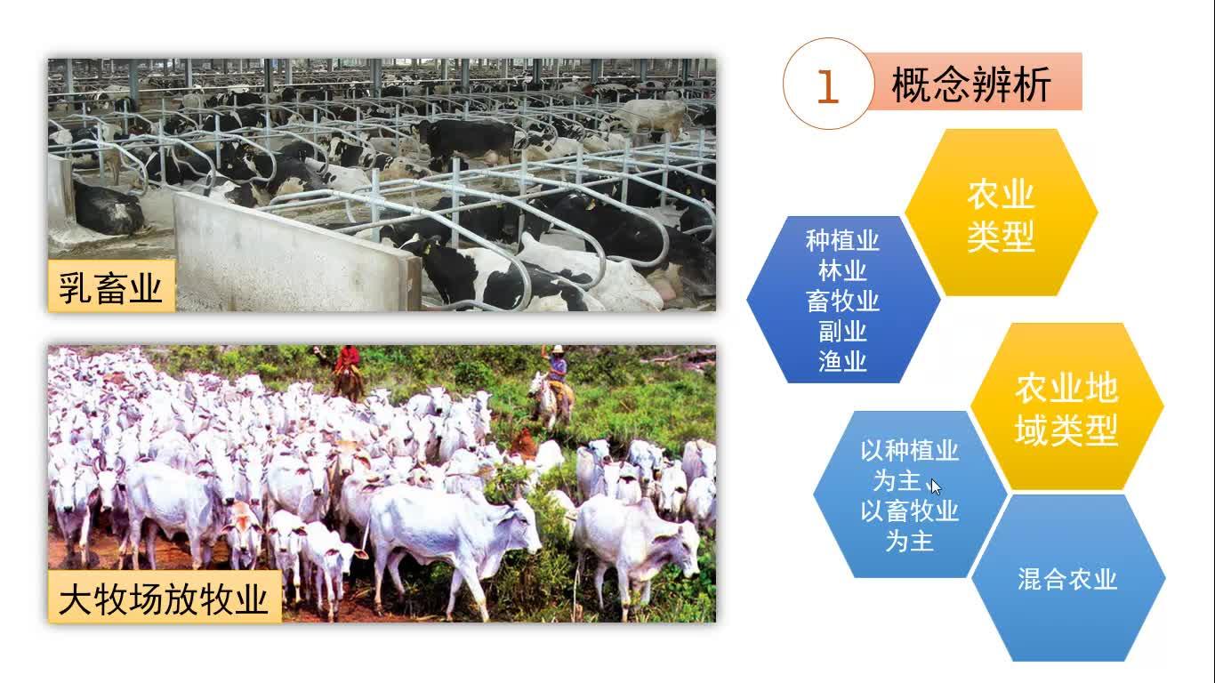 高考地理 农业专题复习5-世界乳畜业的分布及原因-视频微课堂