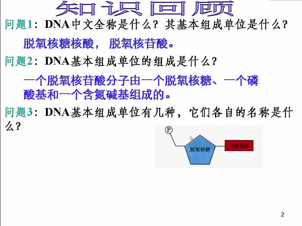 苏教版 高一生物 必修二 4.2 DNA分子的结构-视频微课堂