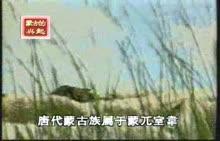 人教版七年级历史下册第10课蒙古族兴起与元朝建立视频素材-蒙古的兴起