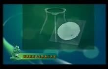 高中生物:观察DNA和RNA在细胞中的分布-实验演示视频