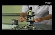 人教版 高三生物-观察植物细胞的有丝分裂-实验演示视频