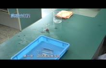 河南2018中考生物实验--02观察双子叶植物种子的结构(视频)