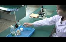 河南2018中考生物实验--11用显微镜观察人的口腔上皮细胞(视频)