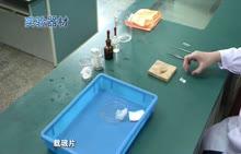 河南2018中考生物实验--03制作洋葱鳞片叶表皮细胞临时装片(视频)