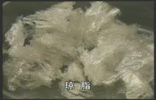 高一生物:探究影响唾液淀粉酶活性的温度条件-实验演示视频