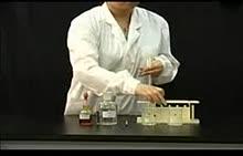 人教版 高一化学 必修二 实验-温度对化学反应速率的影响-实验演示
