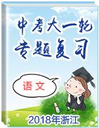 2018年浙江中考语文大一轮专题复习