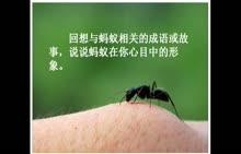 人教版 初二语文 蚂蚁-微课堂视频
