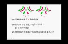 人教版生物必修二 第五章 第二节 染色体的变异-微课