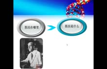 高中生物必修二名师微课:mRNA的发现