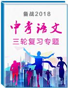 备战2018年中考语文三轮复习专题