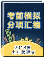 2018届九年级语文考前模拟分项汇编