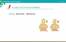 八年级全一册-第一单元步入化学殿堂-第二节体验化学探究-3.对人体吸入的空气和呼出的气体的研究