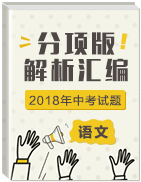 2018年中考语文试题分项版解析汇编