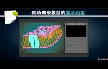 人教版 高中生物 必修一 第四章第二节 细胞膜的流动镶嵌模型-视频微课堂