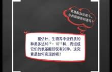 人教版 高中生物 必修一 2.2波普珠tells you,蛋白质为何多样?