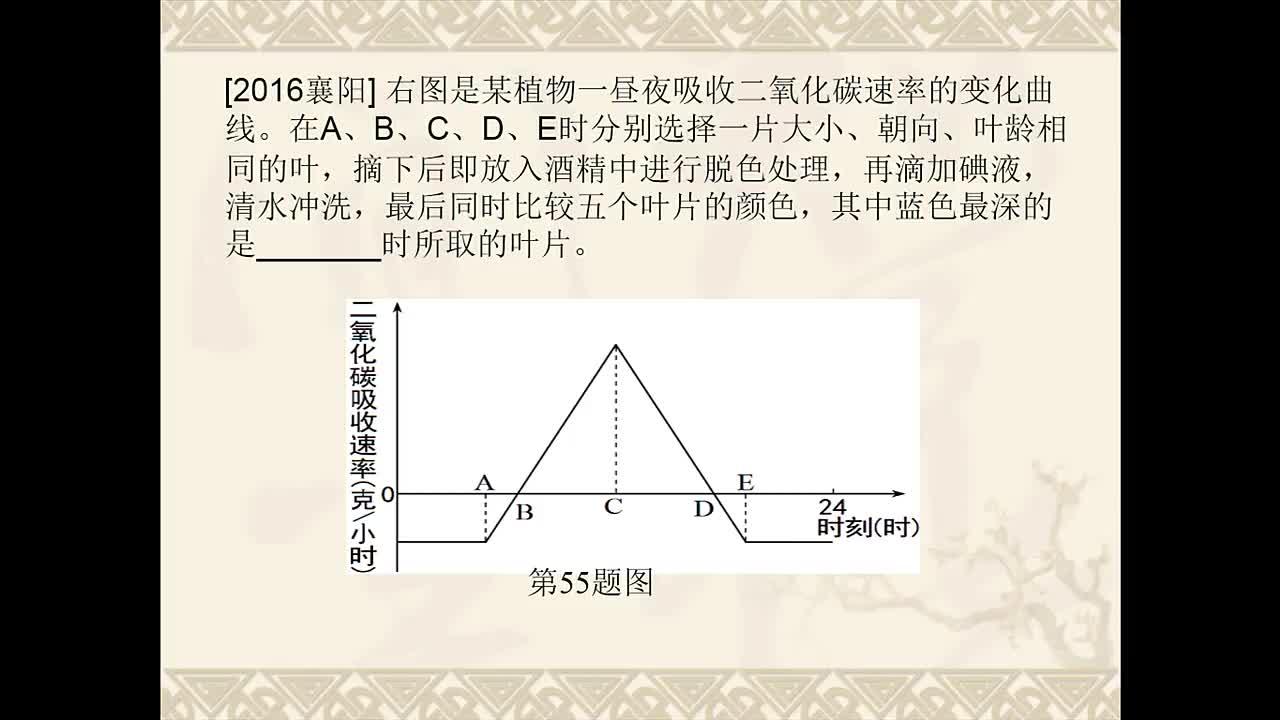 人教版 初中生物复习 解读生物试题中的曲线图