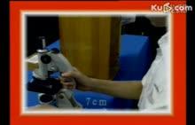 人教版 九年级物理全册 显微镜的使用-实验演示