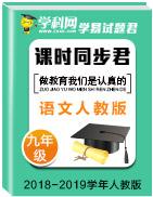 学易试题君之课时同步君2018-2019学年九年级语文人教版