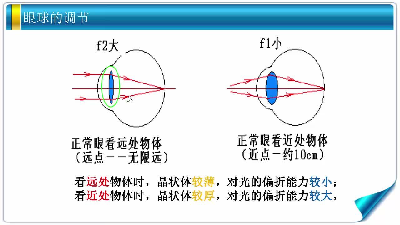 苏科版 八年级物理上册 第四章光的折射透镜-第4节照相机与眼睛视力的矫正-视频微课堂
