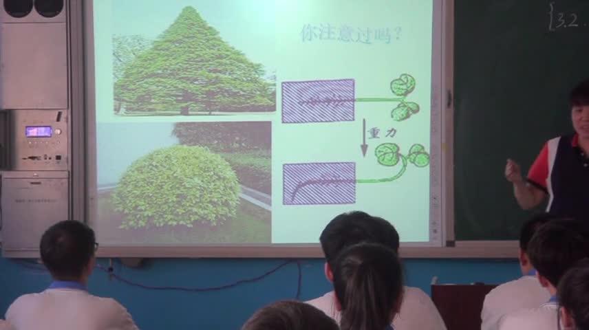 人教版 高二生物 必修三 3.2生长素的生理作用-课堂实录