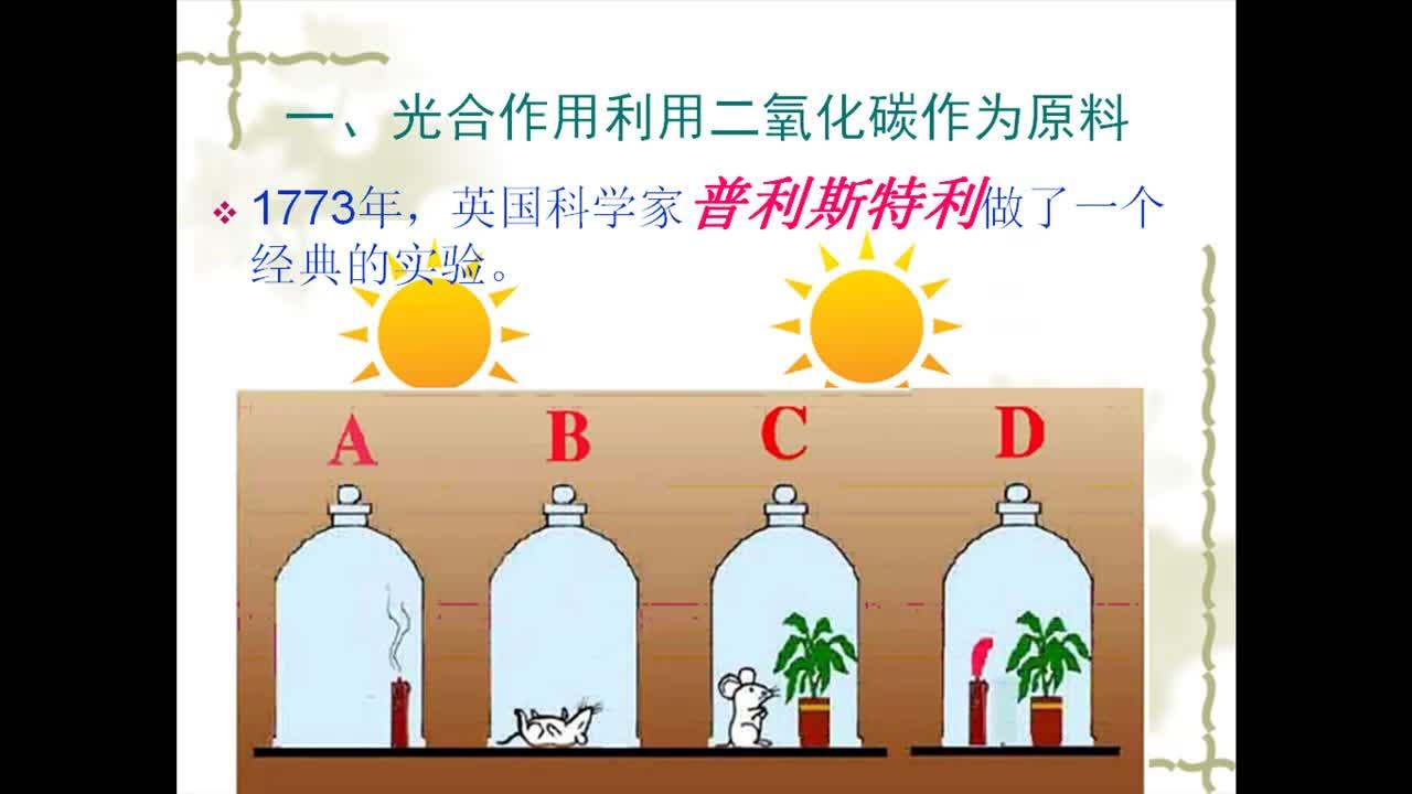人教版 七年级生物上册 第三单元 5.1光合作用吸收二氧化碳释放氧气