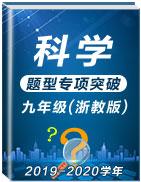 2019-2020學年九年級上冊科學題型專項突破(浙教版)