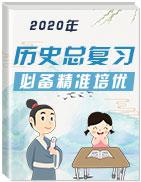 精准培优2020年高考历史总复习必备