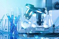 初中化学80个实验现象详细总结( Ⅱ )