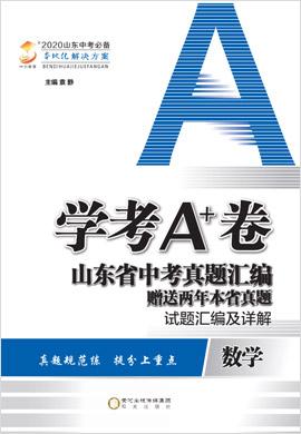 2020版【学考A+卷】山东省中考数学真题汇编 试题汇编及详解