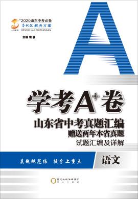 2020版【学考A+卷】山东省中考语文真题汇编 试题汇编及详解