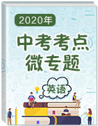 2020年中考英語【考點微專題】