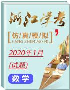 2020年1月浙江學考數學仿真模擬試題