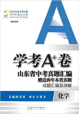 2020版【学考A+卷】山东省中考化学真题汇编 试题汇编及详解