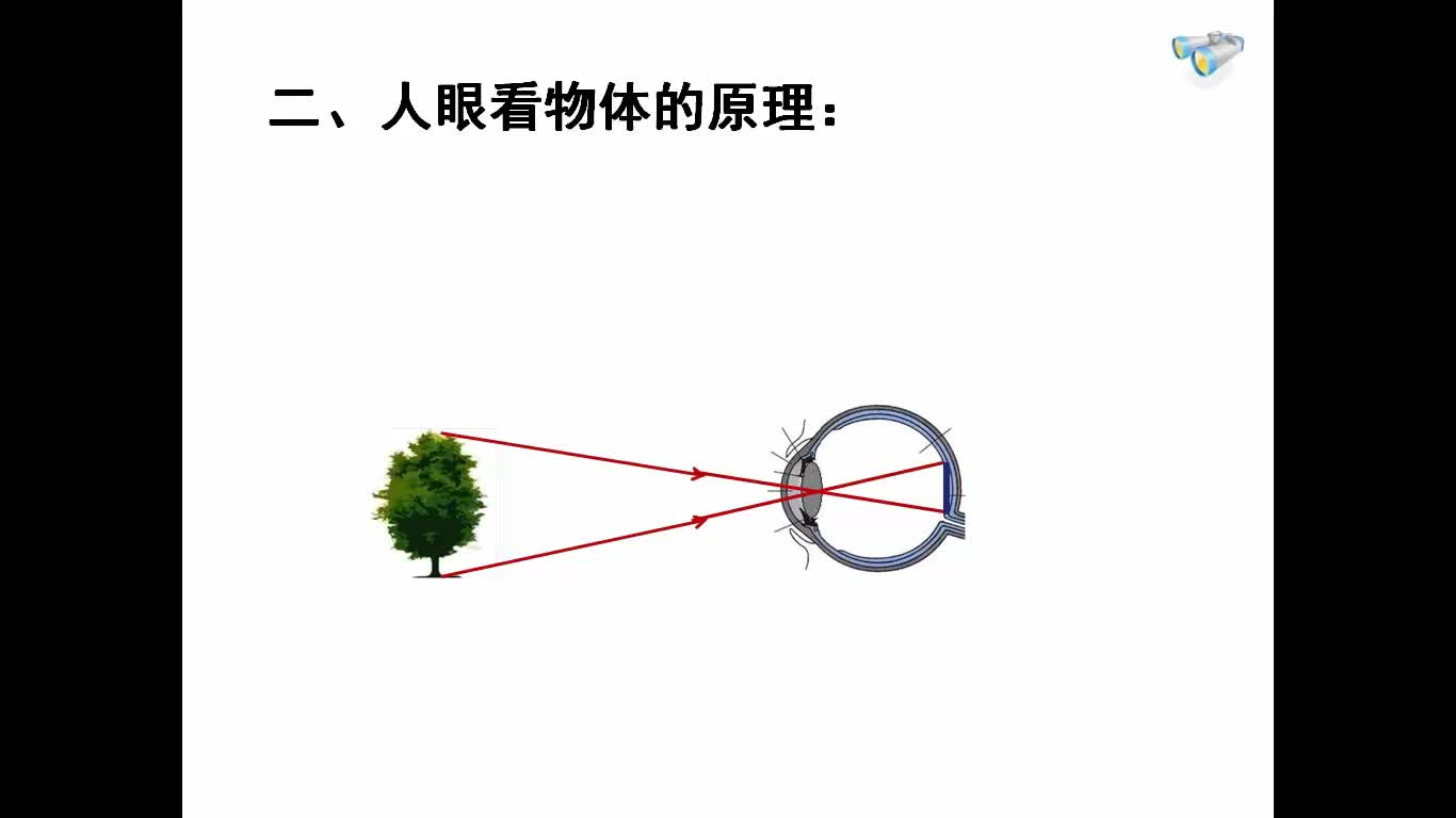 人教版 八年级物理上册 第五章 第四节 眼睛和眼镜-视频微课堂(蓝天微课堂)