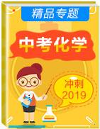 2019年中考化学冲刺精品专题