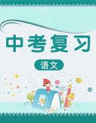 2019中考语文(全国版)考前增分练