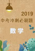 2019中考冲刺必刷题-数学