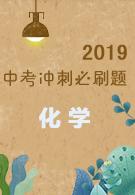 2019中考冲刺必刷题-化学