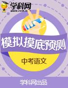 安徽省2019年中考预测模拟试卷汇总语文