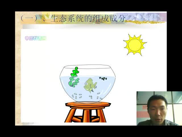 人教版 高二生物必修三 生態系統的組成成分-視頻微課堂