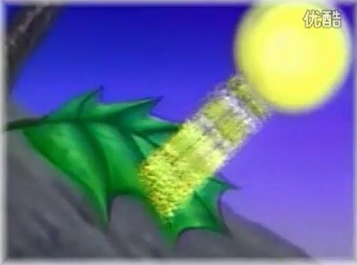 北師大版七年級生物上冊:蒸騰作用的意義-視頻素材