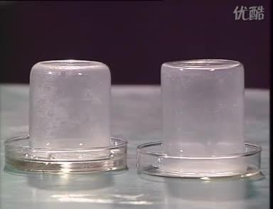 鲁科版 高一化学上册 第三节 硫的转化 浓硫酸的性质--吸水性-实验演示视频