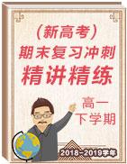 2018-2019学年高一下学期地理期末复习冲刺精讲精练(新高考)