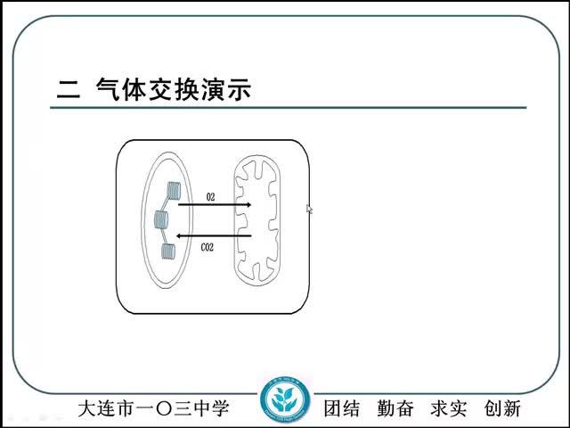 人教版 高三生物 光合作用與細胞呼吸的相關計算-視頻微課堂