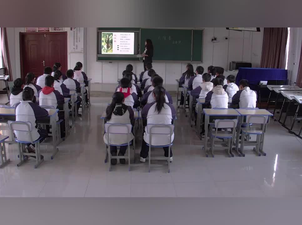 人教版 九年级语文 武陵春-视频公开课