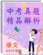 【真题解析】全国2019年中考语文真题精品解析(精编word版)
