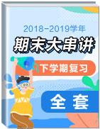 2018-2019学年下学期期末复习大串讲