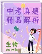 【真题解析】全国2019年中考生物真题精品解析(精编word版)